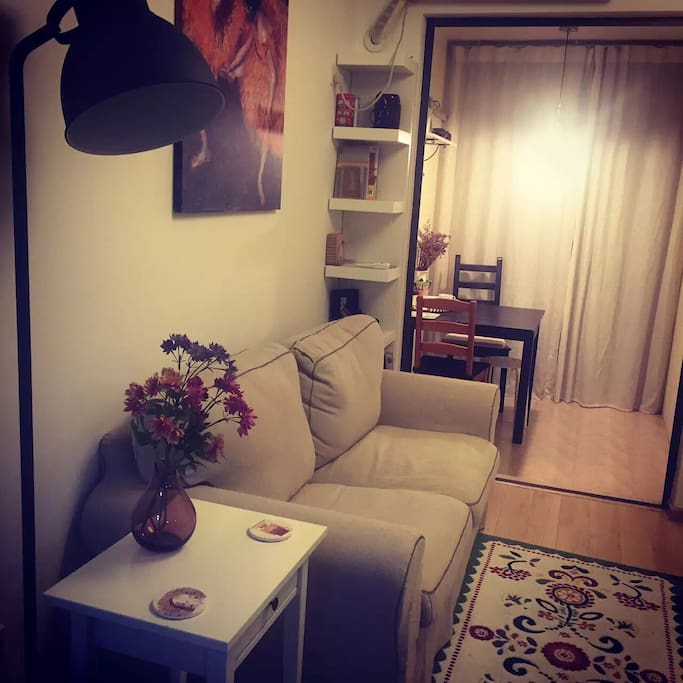 Cozy room at night. 晚上的客厅