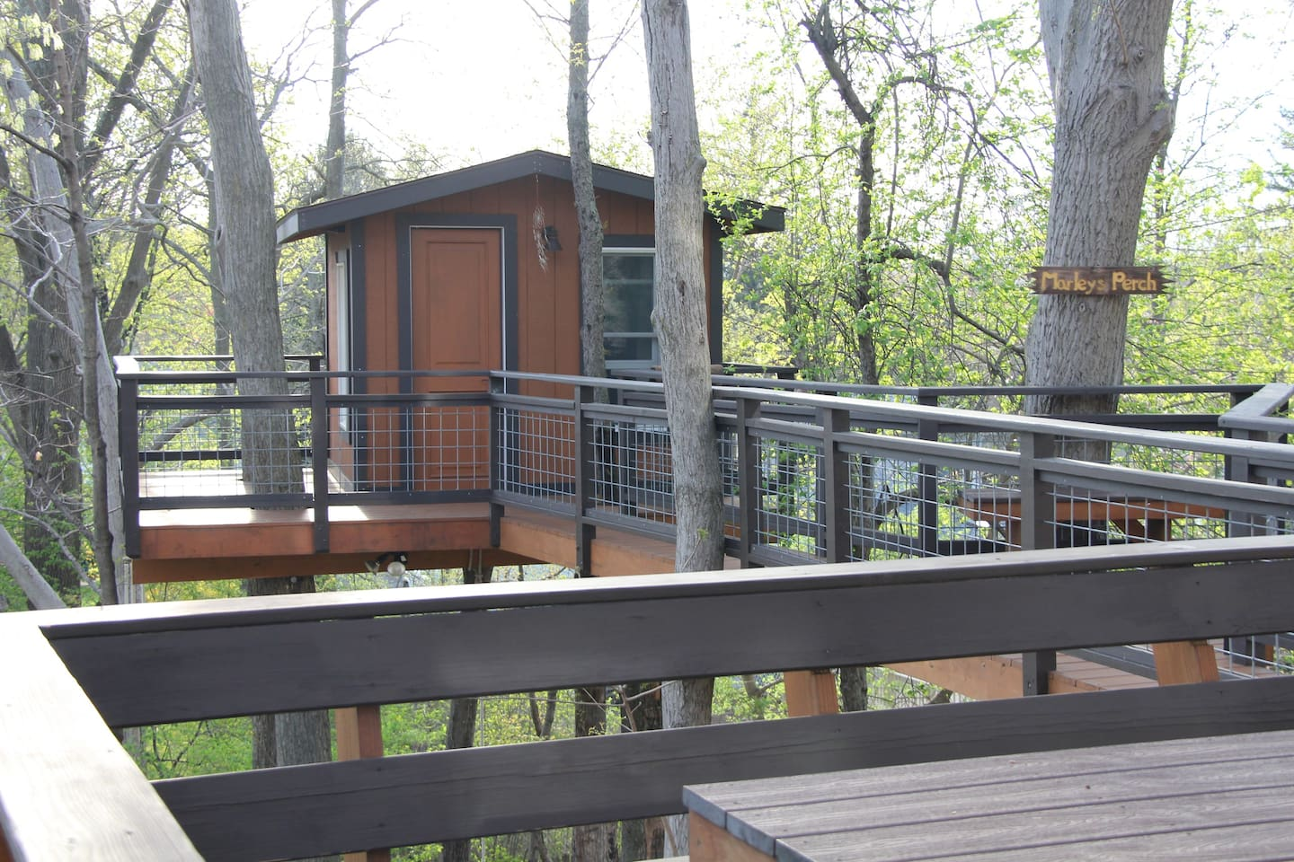 the Monkey's Perch treehouse in New Jersey