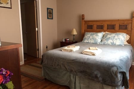 Room & Bath-Common Areas With Owner & 2 Kind Dogs - Mount Carmel