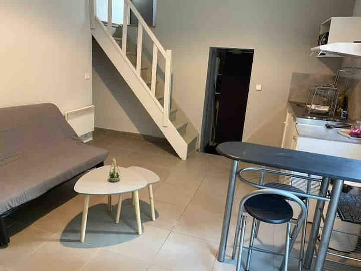 Appartement avec jardinet, Narbonne centre