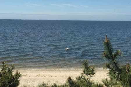 Private beach front home!!! - East Patchogue - Ház