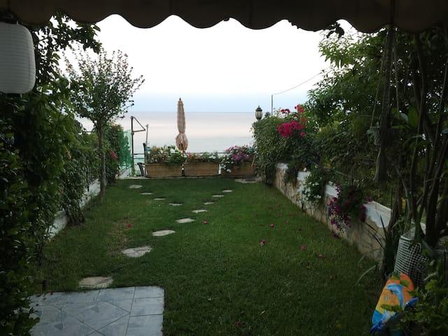 Anastasia Garden View