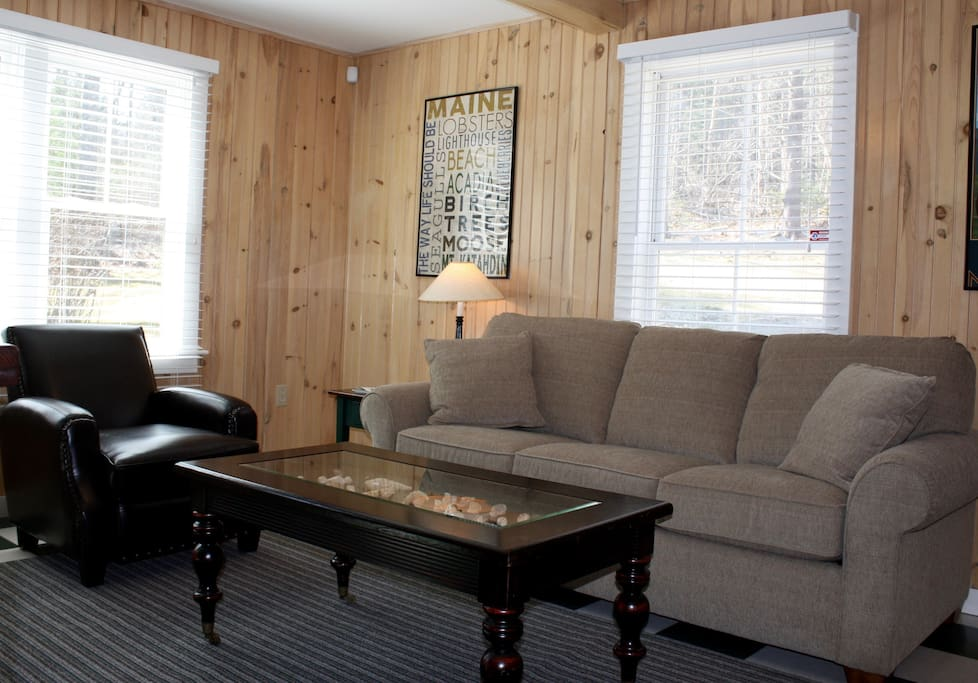 Comfortable living room includes a new queen sleeper sofa.