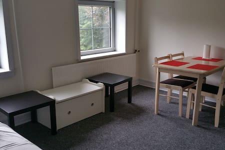 2 værelser evt ekstra opredning bad og tee køkken - Årre - Apartment