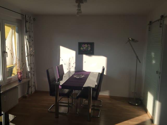 Schöne 2-Zi. Wohnung in Stuttgart-Münster - Stuttgart - Apartment