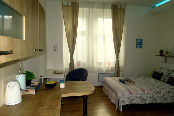Bright and cozy studio 10 minutes to city center - Prag - Daire