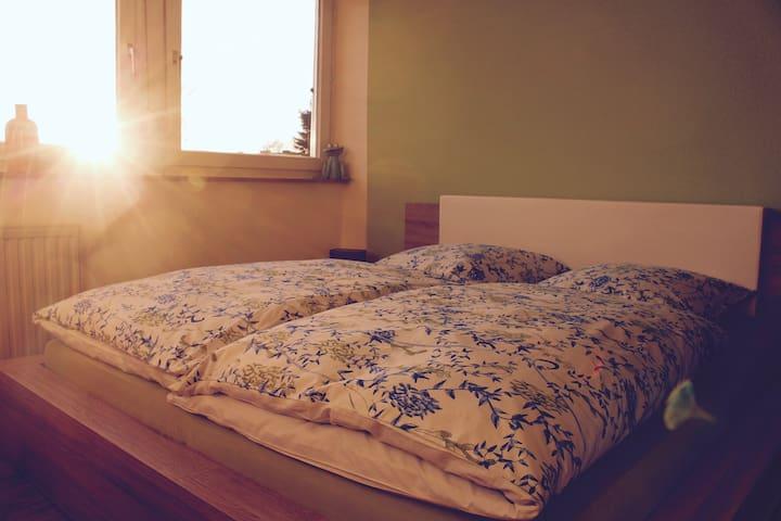 schönes helles Zimmer, Bad, mit separatem Eingang - Aquisgrana - Casa