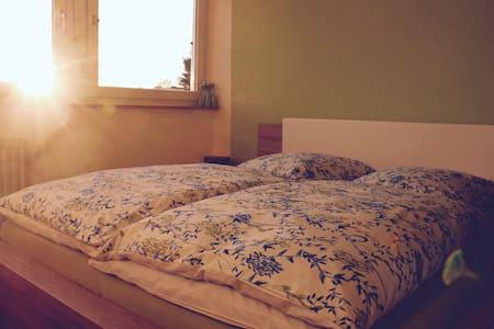 schönes helles Zimmer, Bad, mit separatem Eingang - Aachen