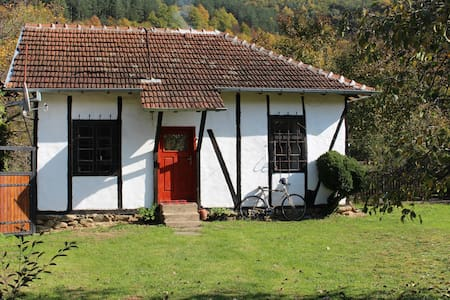 Clay house in North West Bulgaria. - Dalgi del - Casa