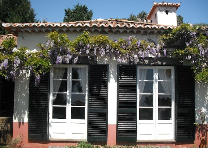 Portuguese Traditional House - Funchal - Hus