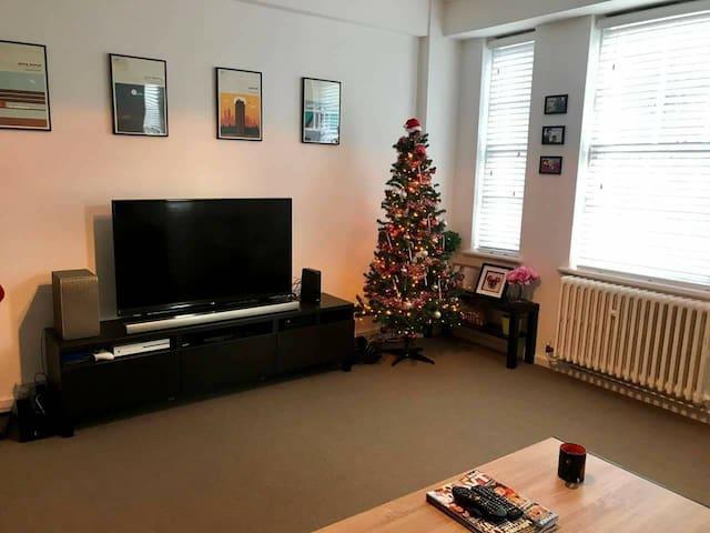 Lovely one bedroom apartment Mala Strana