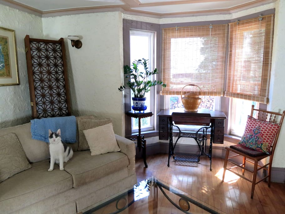 The Living Room Bay Window & Couch