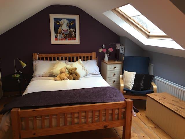 Triple Room in cosy Dublin home