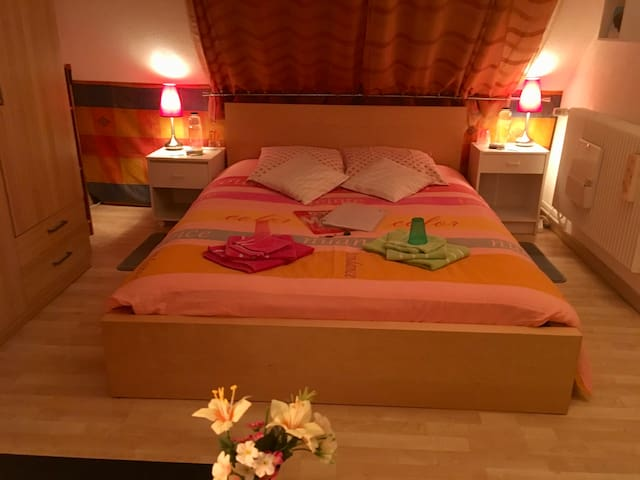 Chambre lumineuse 5 mn de Colmar Bed & Breakfast - Horbourg-Wihr - House