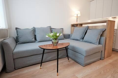 NEW cozy studio near Akropolis and Švyturio arena2