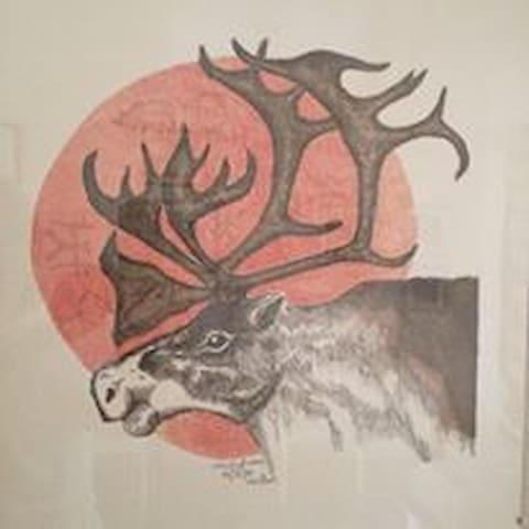 Lapland Room i Miniguesthouse. Meet our reindeer - Jokkmokk - Ev