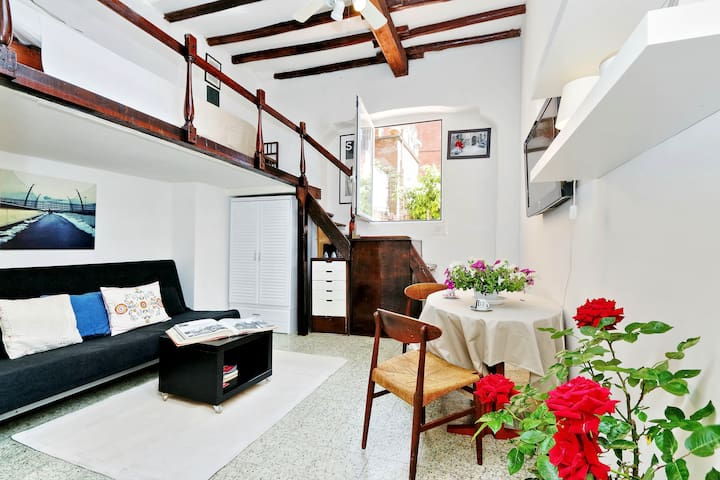 Charming flat in Trastevere
