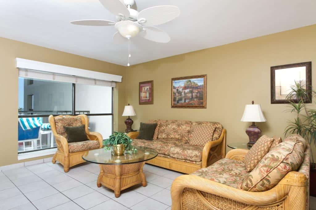 Living Area Wiith Sofa Sleeper