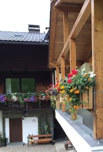 Apartment mit Terrasse mitten  im Skigebiet - Patergassen - Appartement