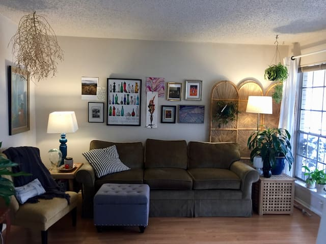 Cozy living room full of art, plants and great lighting