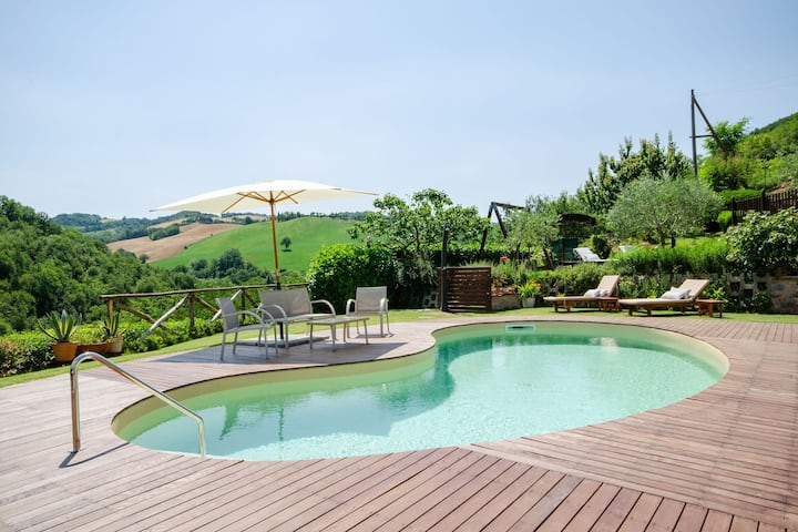 Serene Holiday Home in Urbino with Private Pool