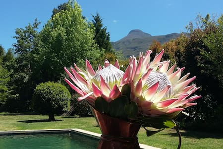 Ella's Cottage - Greyton