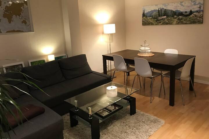 Sehr zentrales, schönes Appartement - 3Zimmer 65qm