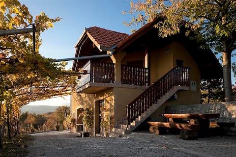 Vineyard cottage Brodarič