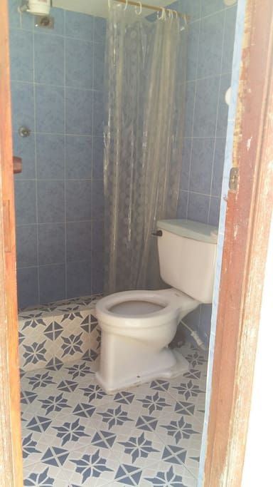 Cuarto de baño con ducha caliente, jabón, champú y toalla