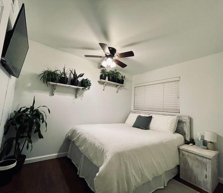 Desert Jungle - Rustic Room