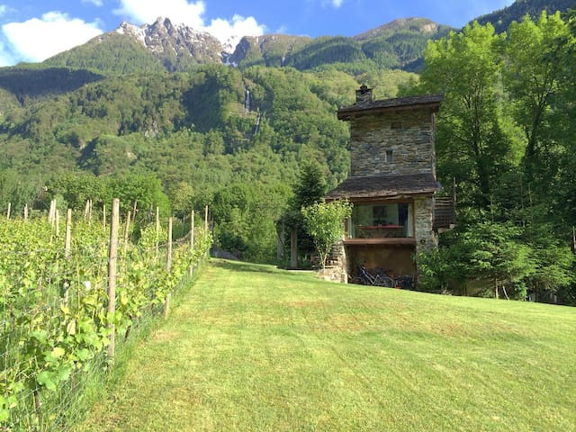 Torre Scilano, Chiavenna(tower in Bio vineyard)