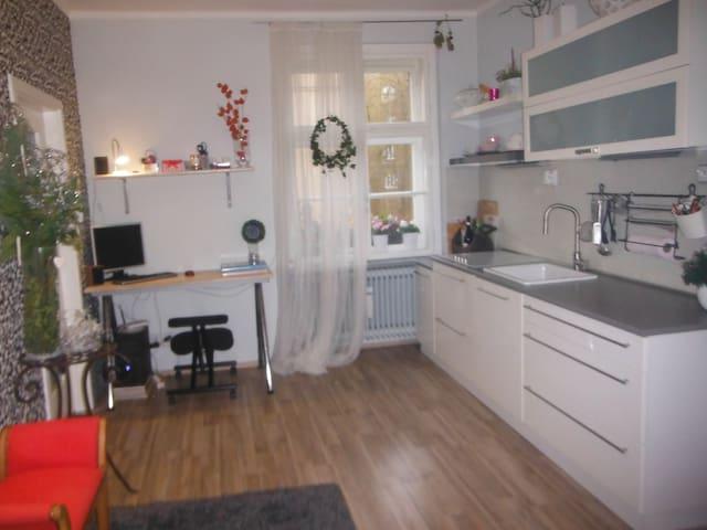 Dvoupokojový byt na klidném místě - Ústí nad Labem