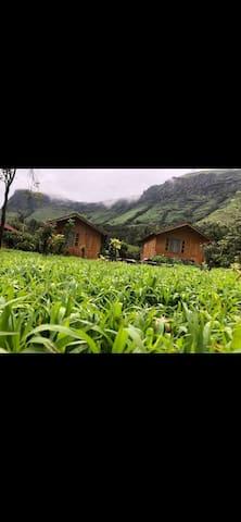 Manikyadhara homestay cottage 2