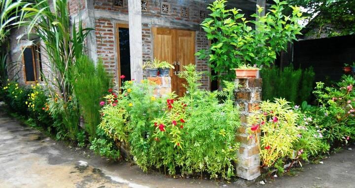 Bilkis' Green House