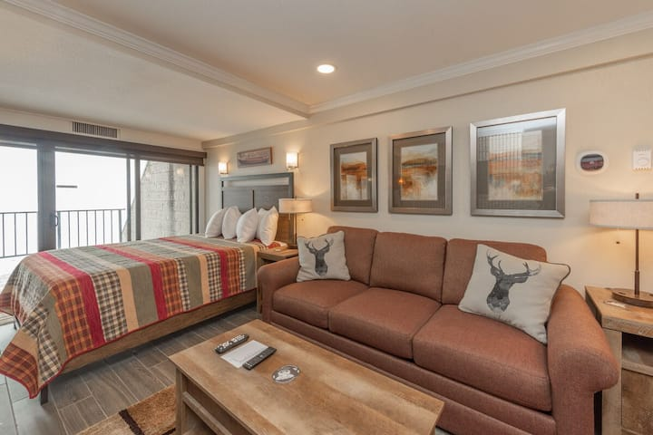 203A - Lakefront Efficiency Condo, Access to Indoor Pool!
