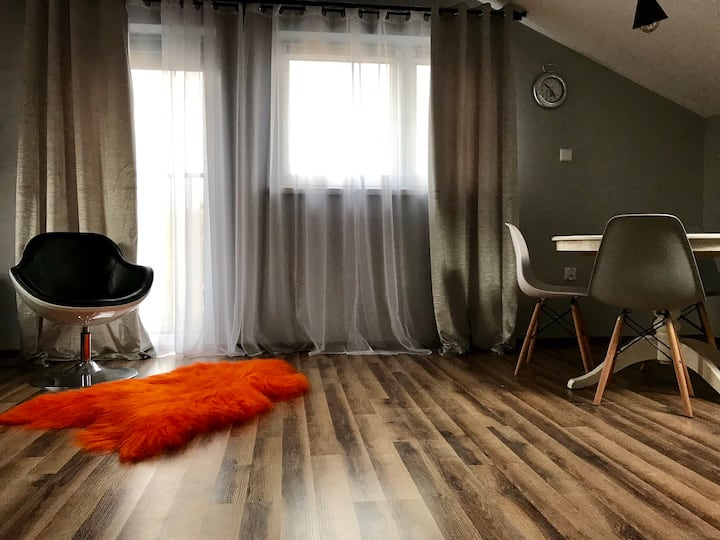 Luxury Apartment Bielany 2