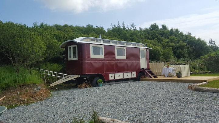 Tattoo lady.  The wild Atlantic wagon