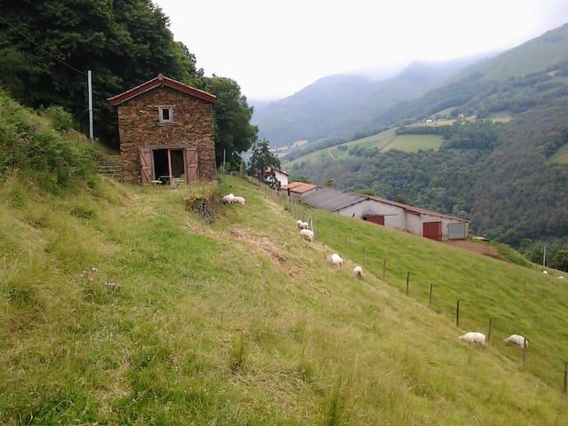 Pour amoureux de la nature - Arnéguy - Chatka