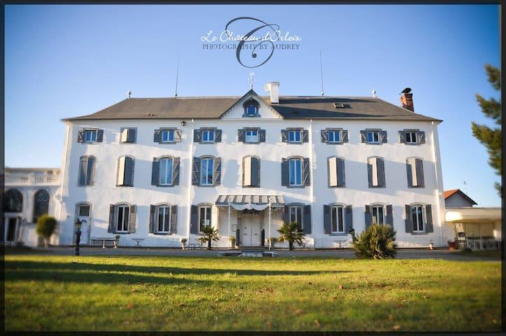 Le Château d'ORLEIX - Orleix