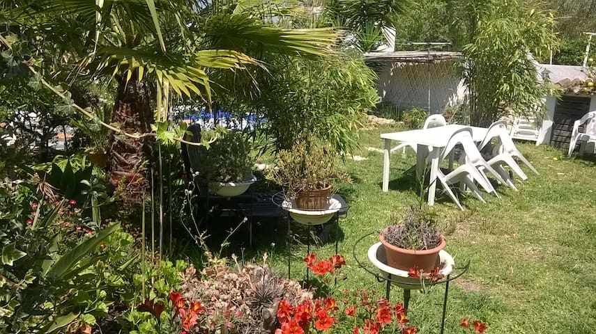 Casa Rosa com jardim - Vila Nova de Milfontes - Casa