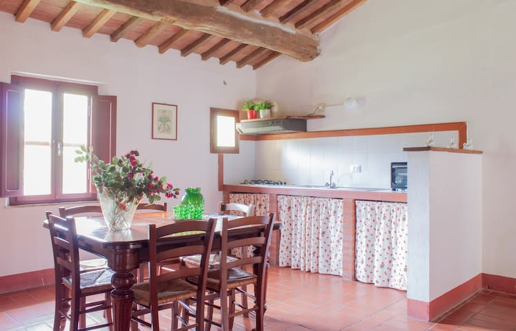 Muflone - 5 beds apartment Tuscan countryside - Guasticce - Apartament