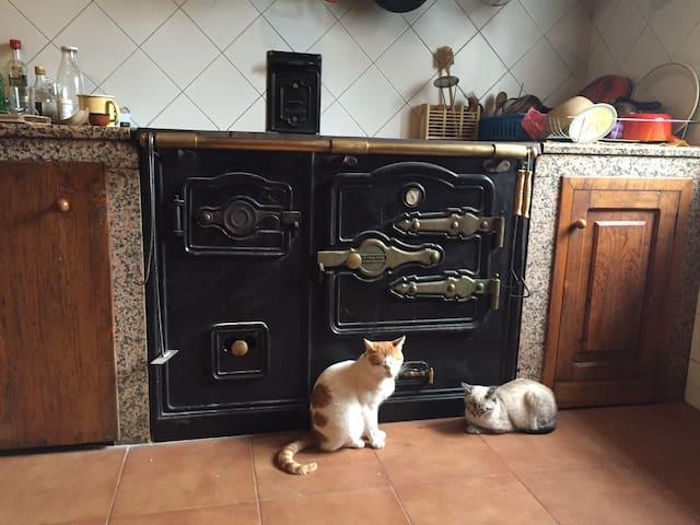 Casa en Galicia - Silleda