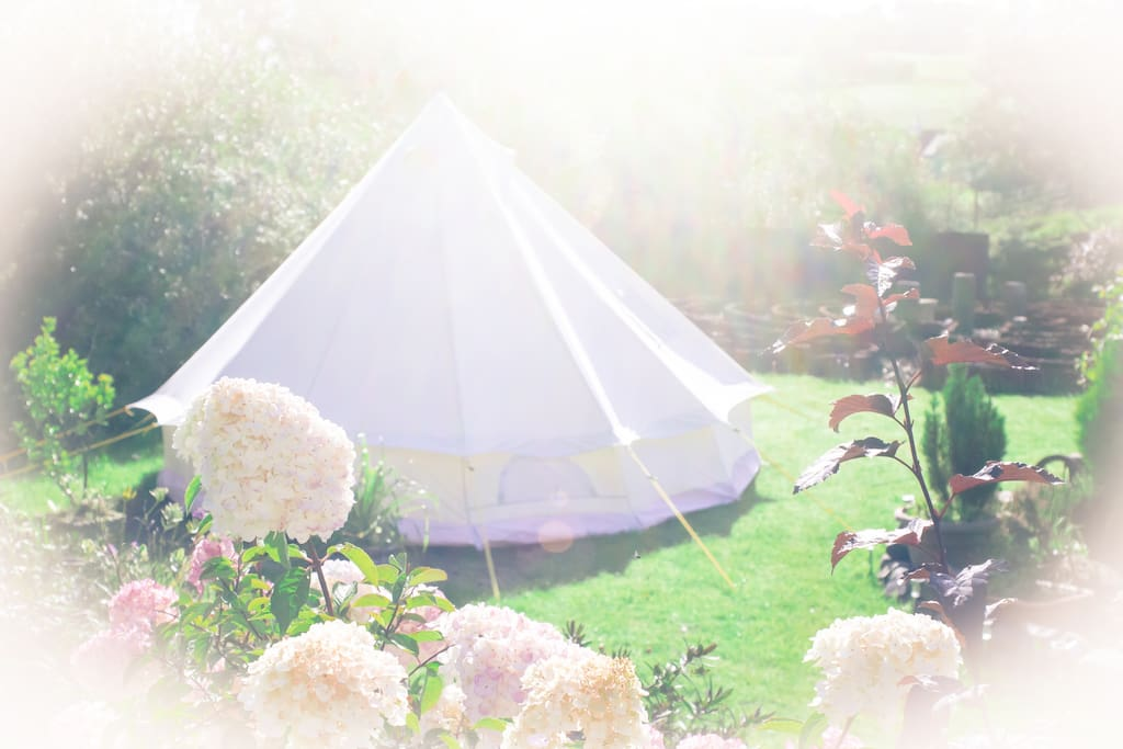 The Bell Tent in its romantic setting