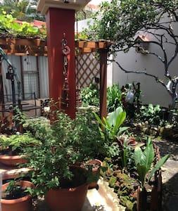 Casa Quirsa, ambiente cálido y acogedor - San José - Bed & Breakfast