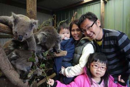 Koala Suite: Fauna Australia - Lavers Hill - Jiné