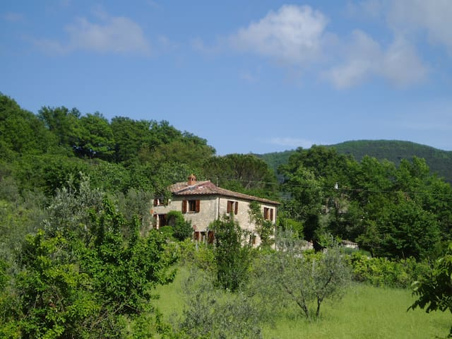 charming cottage with pretty garden full of fruit trees