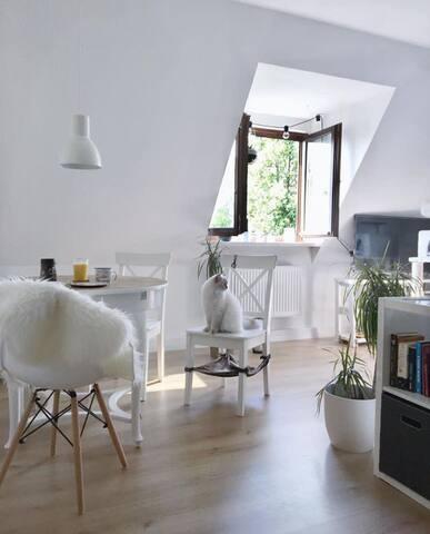 Smarte Wohnung im Herzen von Zwickau