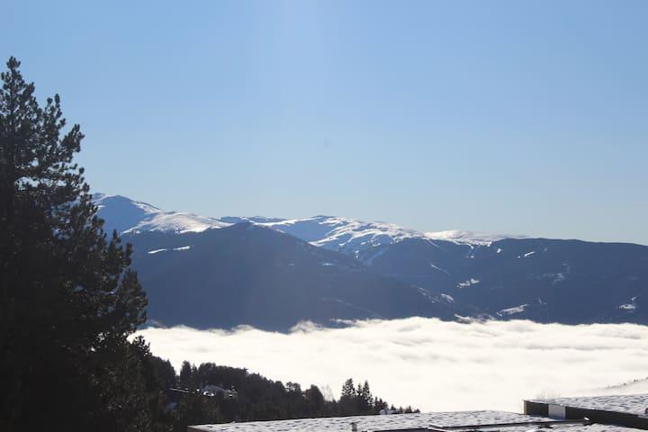 Au-dessus des nuages, dans la forêt et VIP SKI