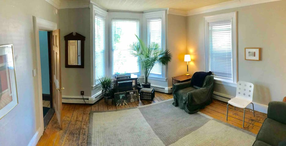 Front parlor with queen size sofa bed. Yes, you can play the records!!  Aux in too