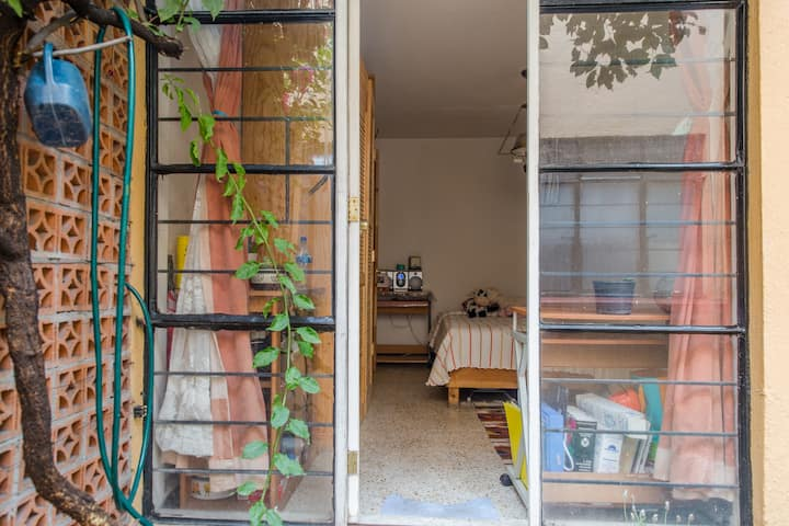 Centric Room at Coyoacán with independent access